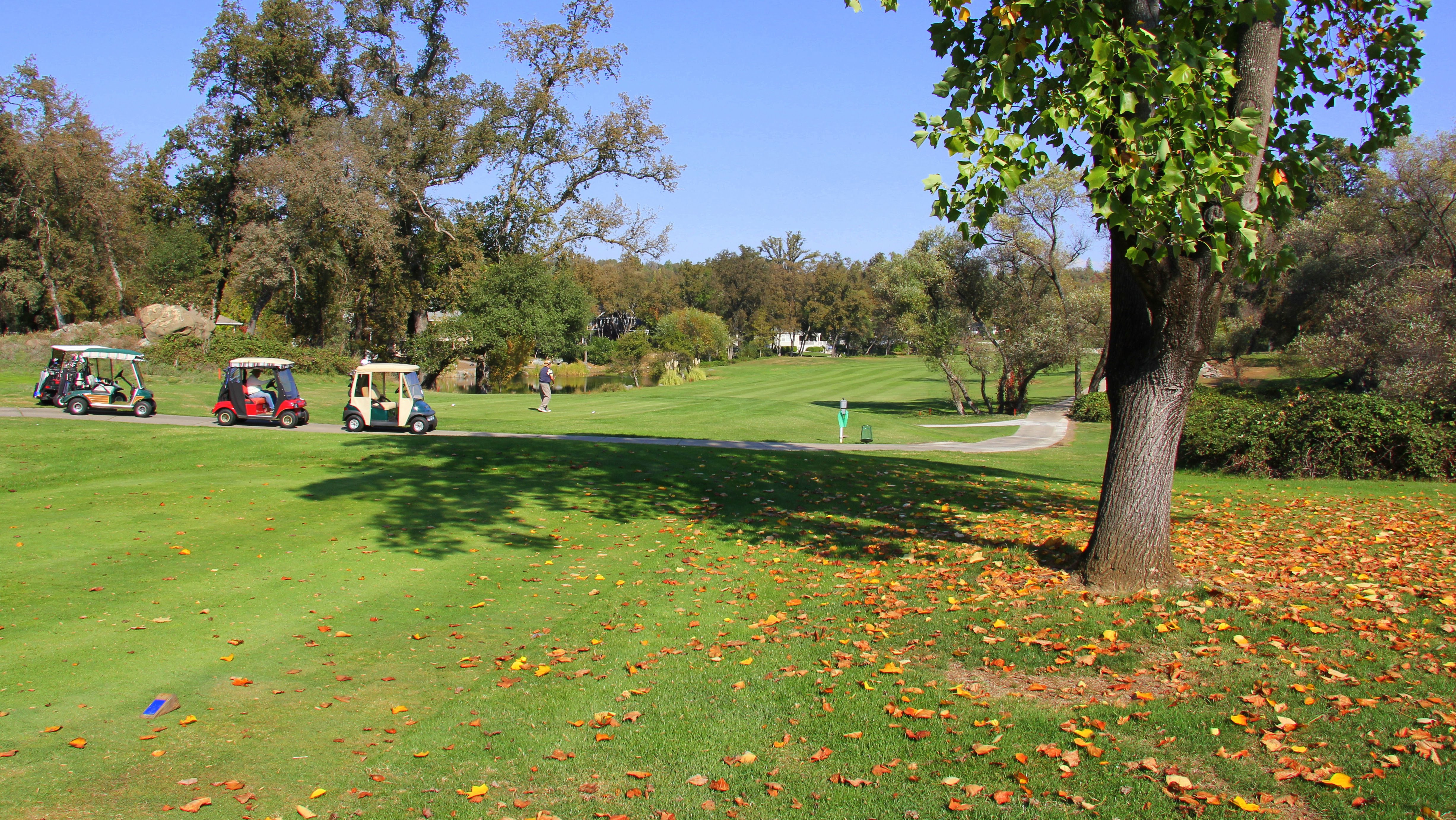 Lake Wild Wood Golf Course
