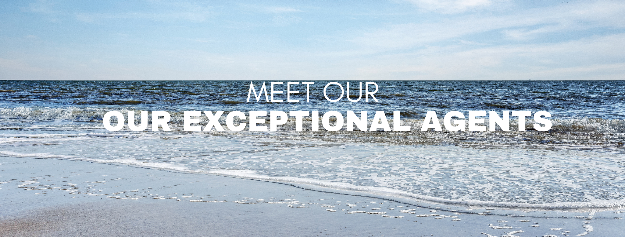 Meet Our Exceptional Agents