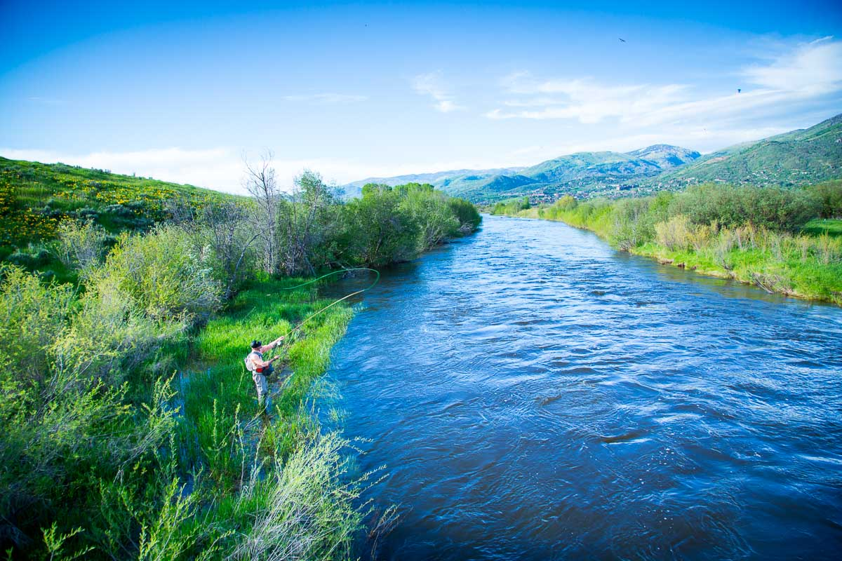 Flying fishing on the Yampa River