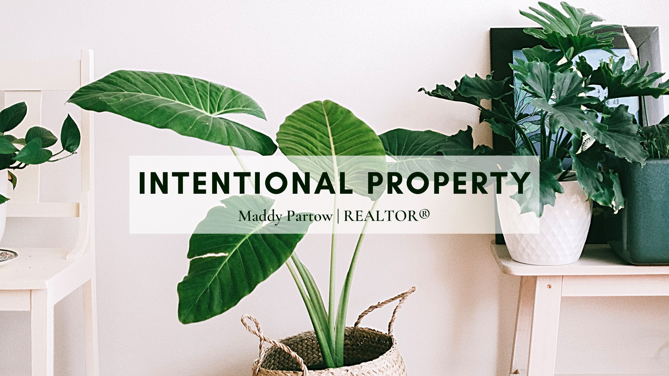 Intentional Property Brand Image