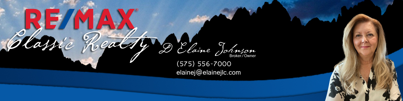 D Elaine Johnson RE/MAX Classic Realty